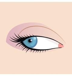 Open female eyes image with beautifully fashion vector image