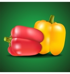 Yellow and red sweet pepper on green background vector image