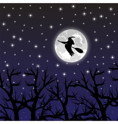 Witch flying on a broom on a full moon vector