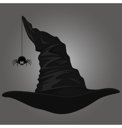 Hat and spider vector