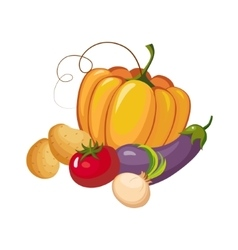 Still life with fresh vegetable crops collection vector