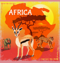 Cartoon african fauna template vector