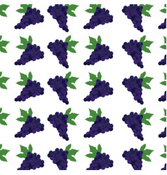 Grape fruit harvest fresh seamless pattern image vector