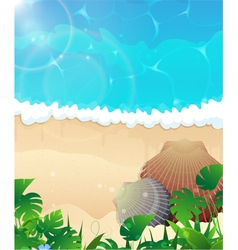 Ocean beach with cockleshells vector