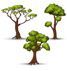Set of flat stylized trees Natural vector image vector image