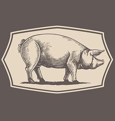 Vintage style pig emblem vector image vector image