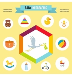 Baby infographic template flat style vector