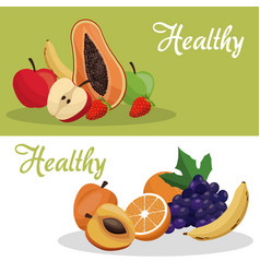 Brochure healthy fruit food vector