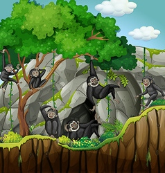 Group of gibbons climbing the tree vector