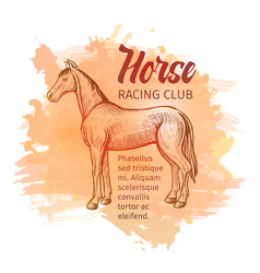 Hand drawn sketch horse horse racing club vector