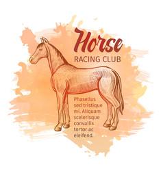Hand drawn sketch horse horse racing club vector