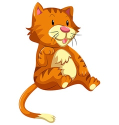 Cute cat with orange fur vector