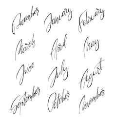 Months handwritten modern calligraphy vector