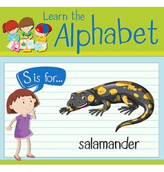 Flashcard letter s is for salamander vector