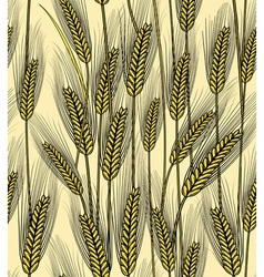Seamless wheat ears background vector image vector image