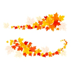 Autumn backgrounds with leaves vector image