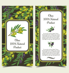 set of banners with olive branches with berries vector image