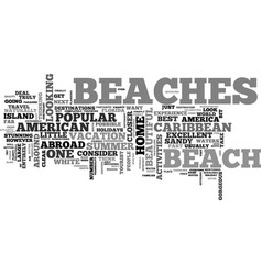 Why go abroad when you have american beaches text vector