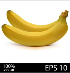 Two bananas in batch vector image