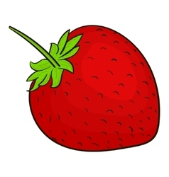 Strawberry berry vector