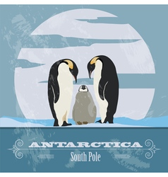 Antarctica south pole retro styled image vector