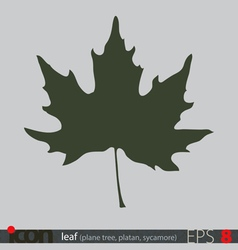 Tree leaf icon vector