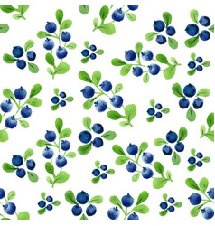 watercolor seamless pattern with berries and vector image vector image
