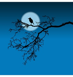 Raven on a branch vector