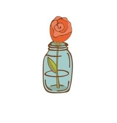 Beautiful rose in glass jar vector
