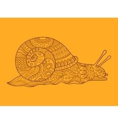 Snail color drawing vector