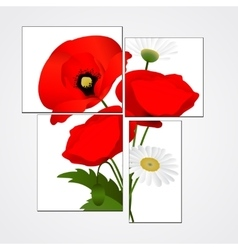 White background with chamomile and poppies vector