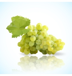 Grapes triangle vector