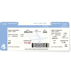 Blue airline boarding pass ticket vector