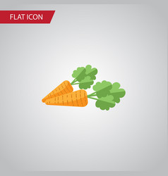 isolated carrot flat icon root vegetable vector image