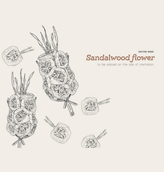 Sandalwood flowers for funeral vector