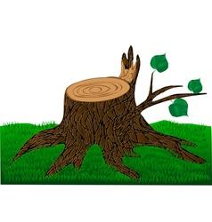 Stump vector