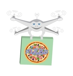 Drone air delivery pizza isolated vector