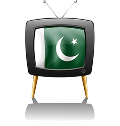 A television with the flag of Pakistan vector image