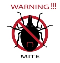 Symbol parasite warning sign mite spider mite vector