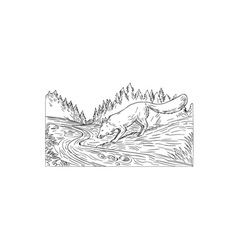 Fox drinking river woods black and white drawing vector