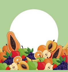 Fruit ripe juicy badge image vector