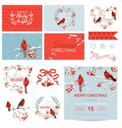 Scrapbook design elements vintage christmas birds vector