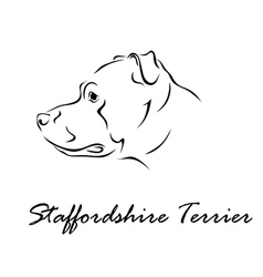 Staffordshire terrier vector