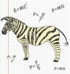 Zebra in a school notebook vector image vector image