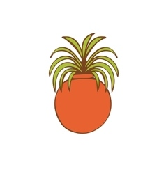 Beautiful house plant in round vase vector