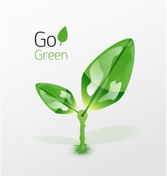 Green plant with leaves nature concept vector image