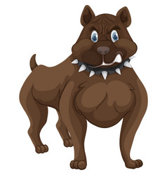 Pitbull with angry face vector