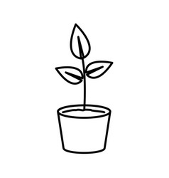 thin line sprout icon vector image