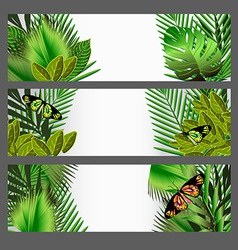 Tropical green leaves set vector