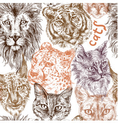 Collection of different cats vector